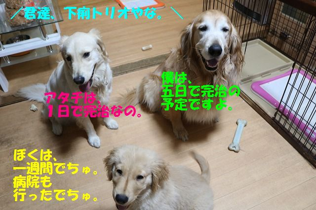 IMG_8643.jpg