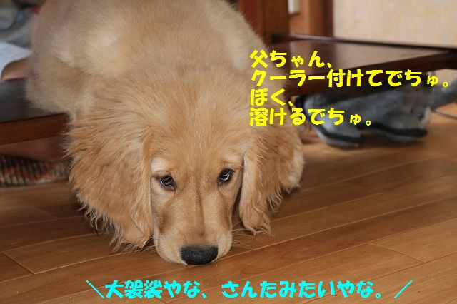 IMG_8843.jpg