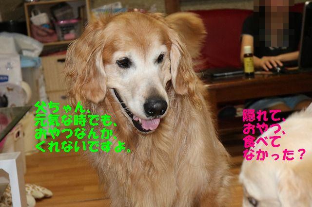 IMG_9593_20170601235836e97.jpg