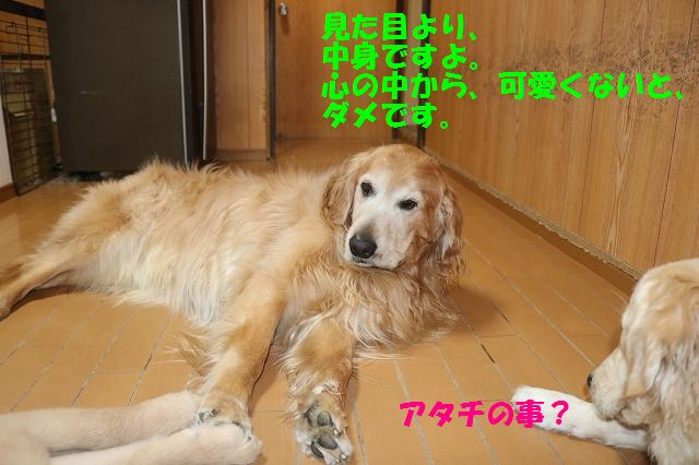 IMG_9687.jpg