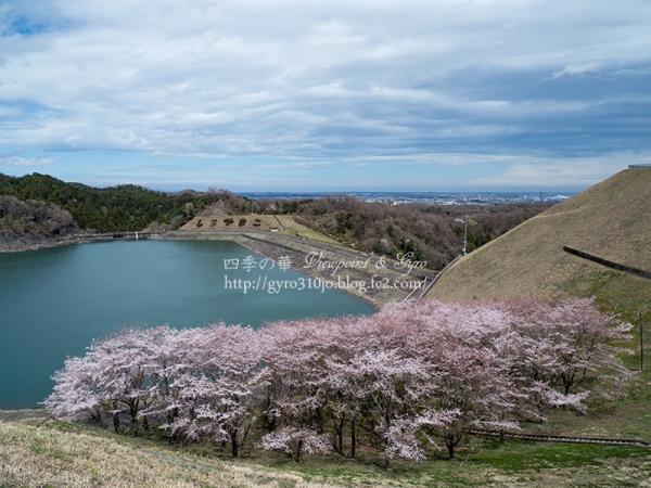 城山湖 C