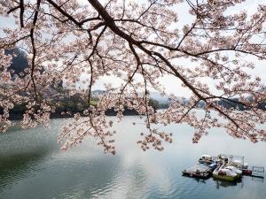津久井湖 G