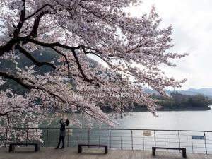 津久井湖 H