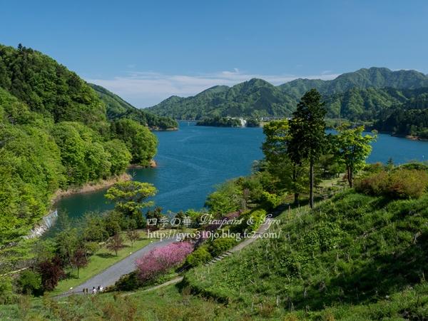 宮ケ瀬湖 C
