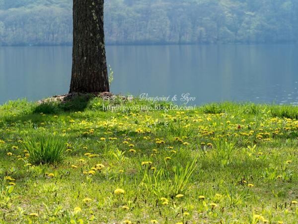 榛名湖 K