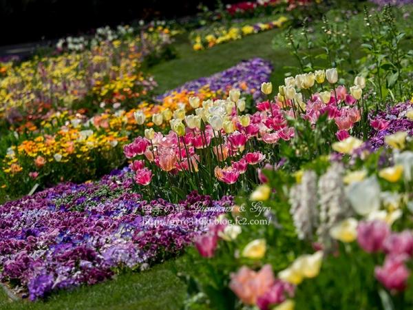 里山ガーデン A