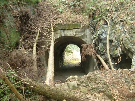 兎之山隧道01
