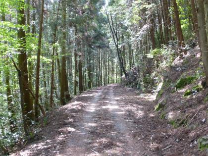 兎之山隧道03