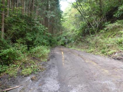 臼杵隧道10