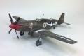 T P-51B (66)