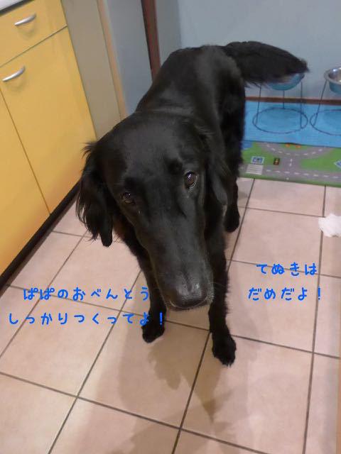 L1320218.jpg