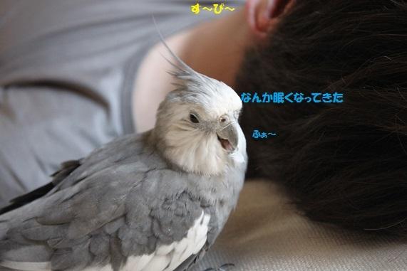 寝てる・・