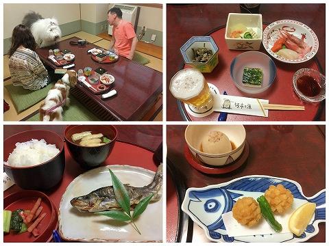 170505sakamoto1.jpg