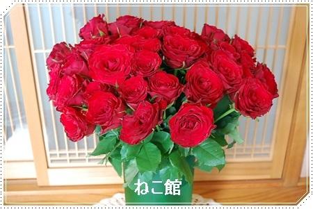 blog4_20170619160031a53.jpg