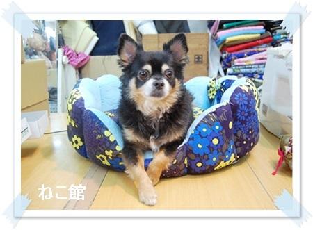 blog_20170610130251800.jpg