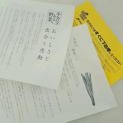 らでぃっしゅ19 (9)