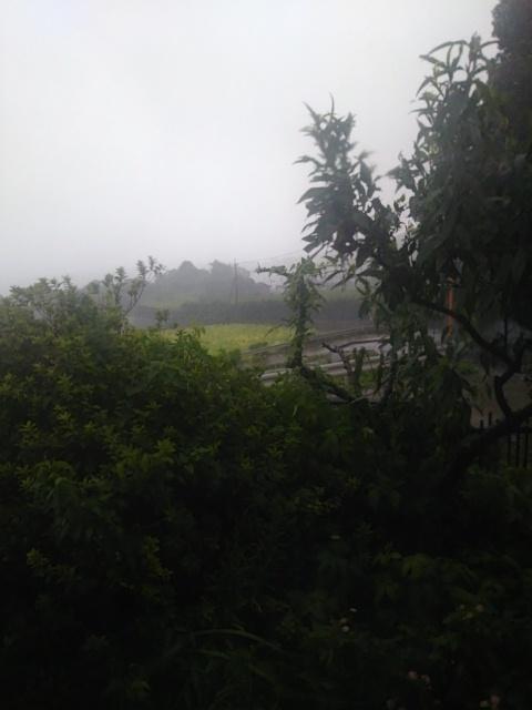 Typhoon No.3 20170704