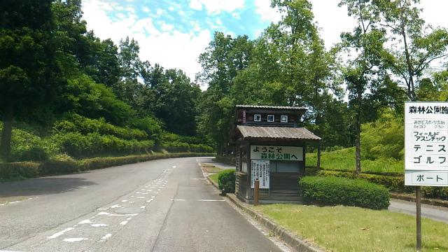 森林公園 20170615-1
