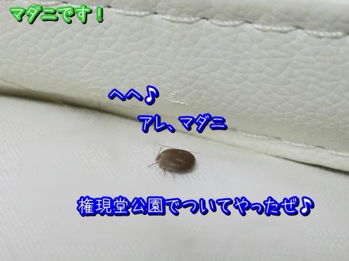 1345-3.jpg
