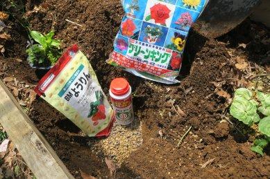 穴を掘り、赤玉土・オルトラン・ようりん・元肥を底に敷く