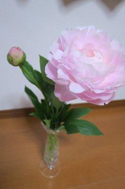 切花の芍薬@150円