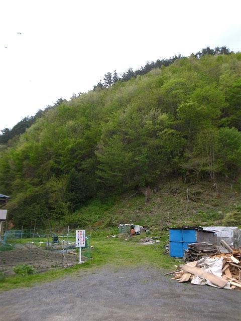 160505橋野食堂-裏山