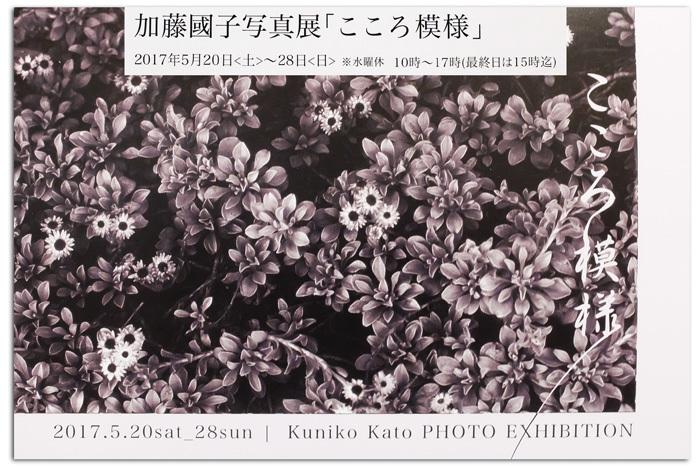 DSCF9572B.jpg