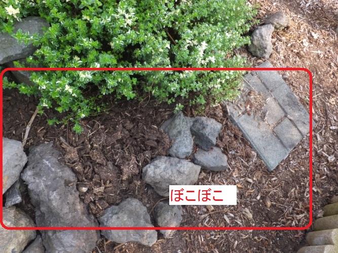 DSCF0280_1.jpg