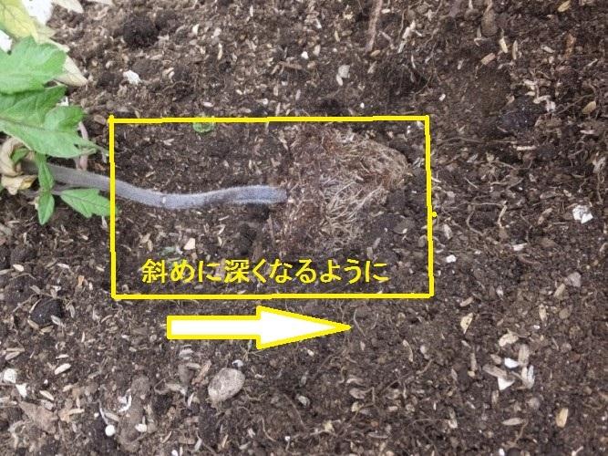 DSCF7477_1.jpg