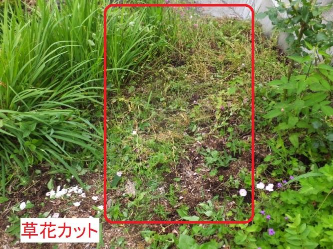 DSCF9801_1.jpg