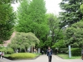 東京芸術大学構内2