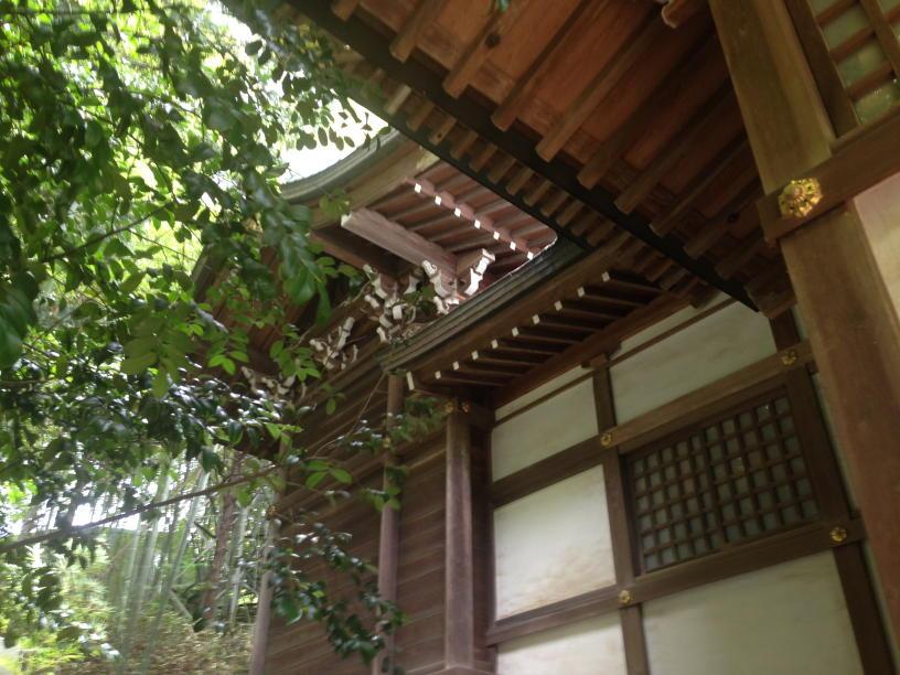 杉山神社 (4)(1)