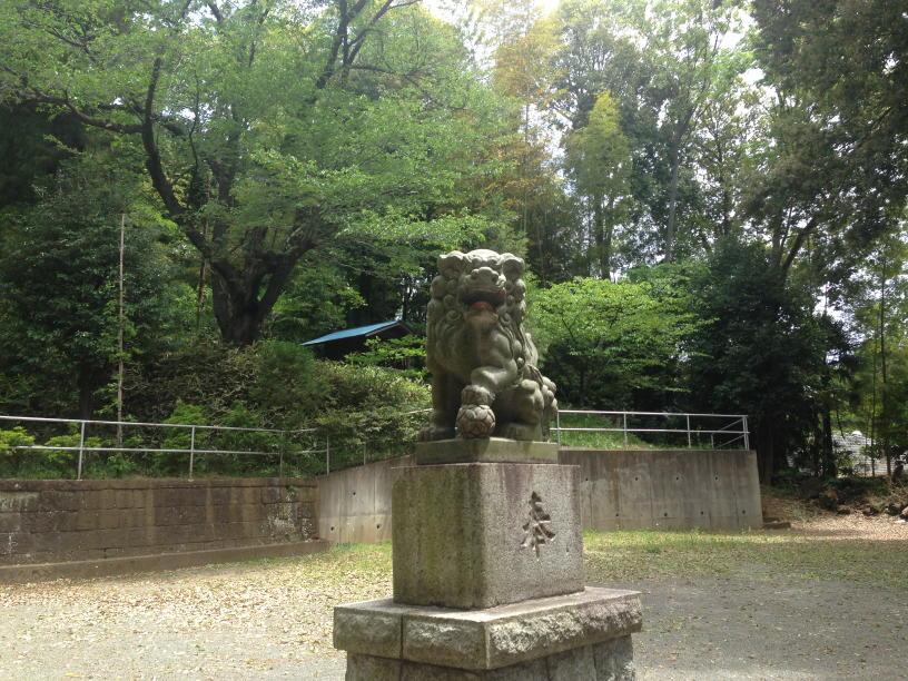 杉山神社 (7)(1)