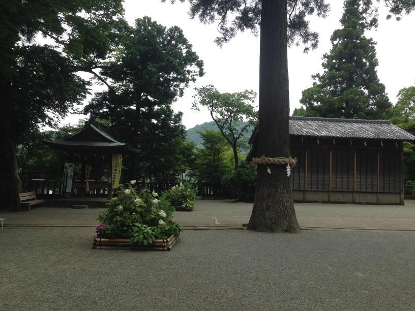 比々多神社 (13)(1)