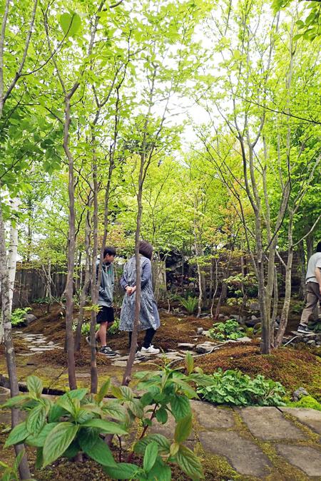 庭木を探す03