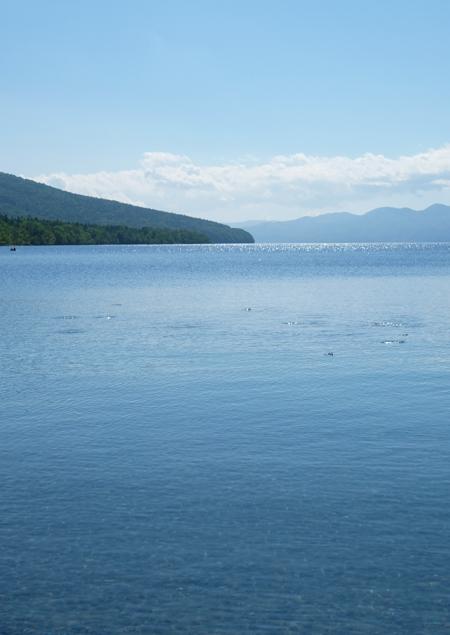 新緑の支笏湖の蒼さ08