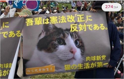 猫を利用する反日アカチョン団体