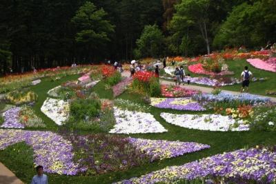10万平米の花畑a_1