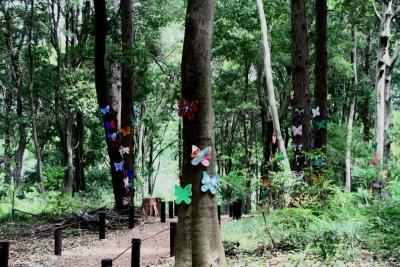 蝶の木工アートa_1