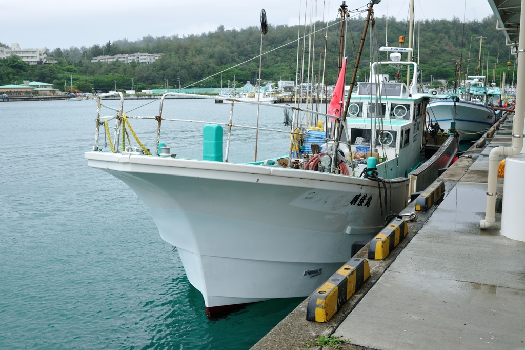 傭船する漁船