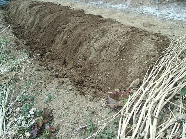 土を盛り上げて