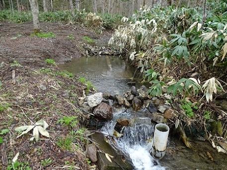 湯の沢冷泉(朝日町 (7)