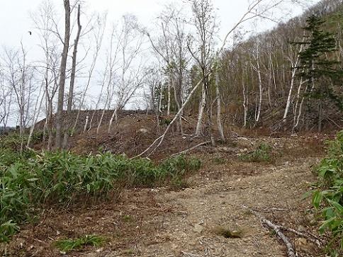 歌登鉱山 (3)
