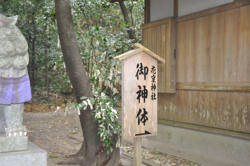 hananoiwayajinjya003_R.jpg