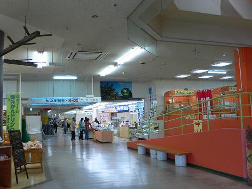 parksitirigahama007_R.jpg