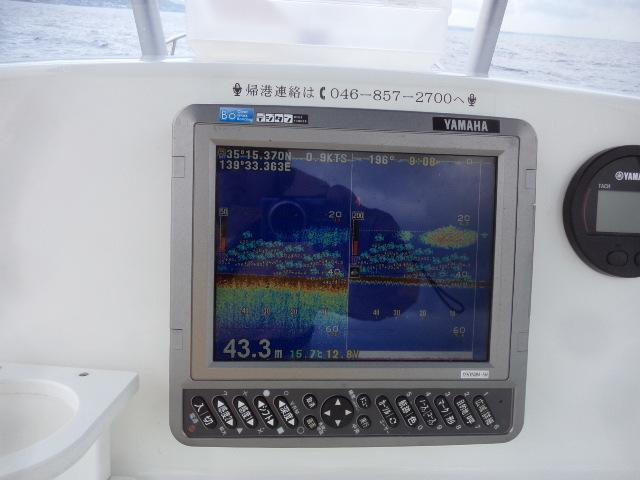 P4286731.jpg