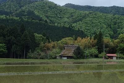 2017_0506森の京都0013