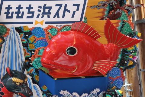 20170701hakata2.jpg