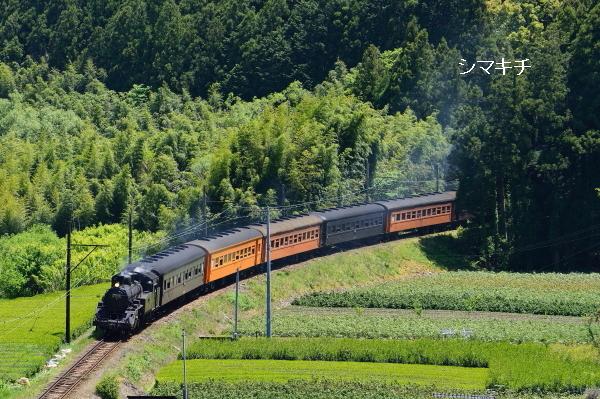 DSC_6613-tb.jpg