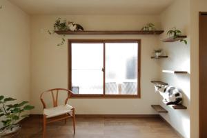 Neco_House2.jpg